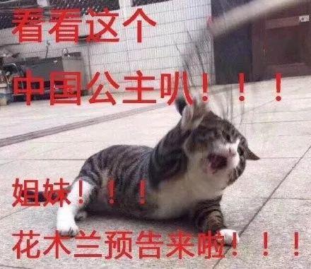 """中国第一位""""公主""""现身,中外网友都炸了!!!"""