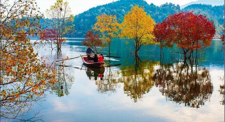 湖北金色赏秋之旅来了 十条线路任你选