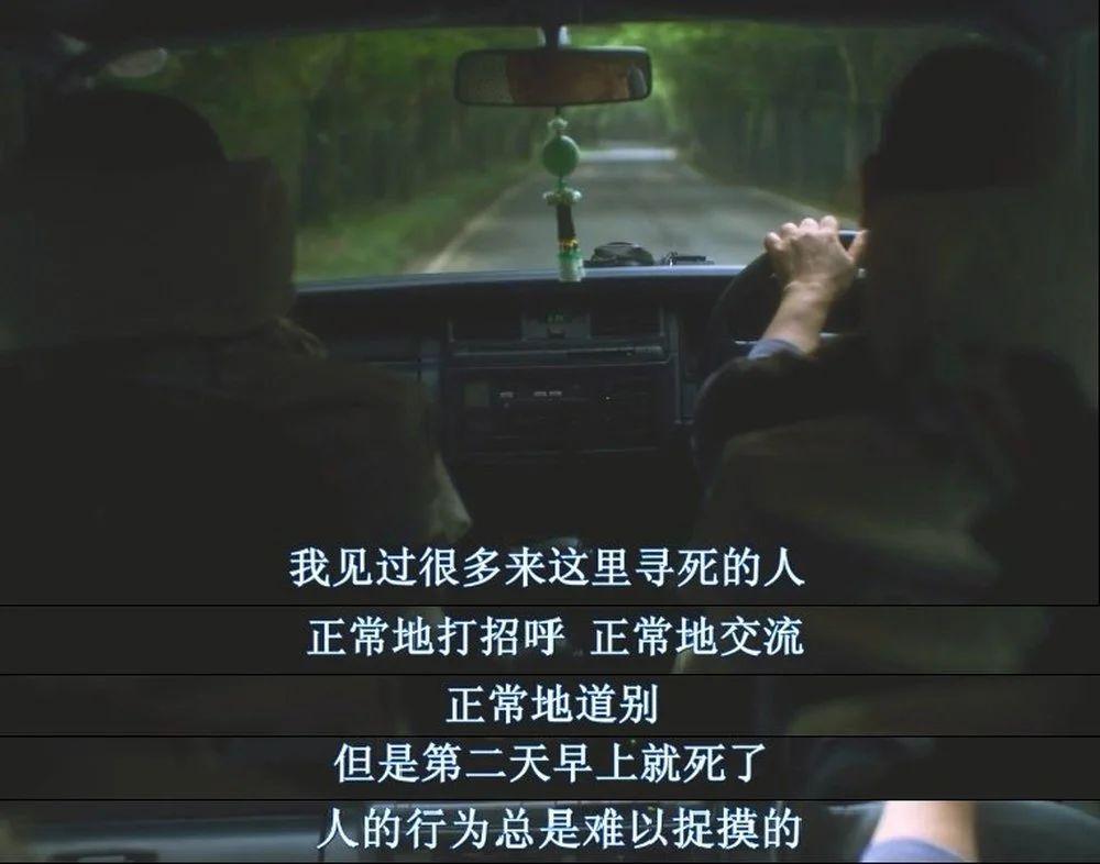 《树海村》影评:全程高能,夏日降温神片来了