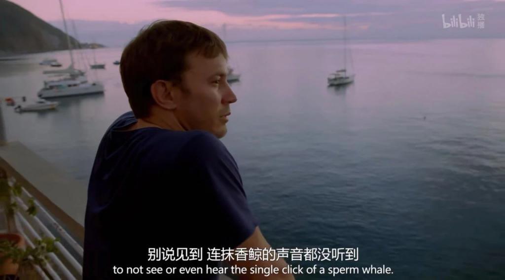 《追踪海洋巨兽》影评:再出一集,分数肯定不止 9.5