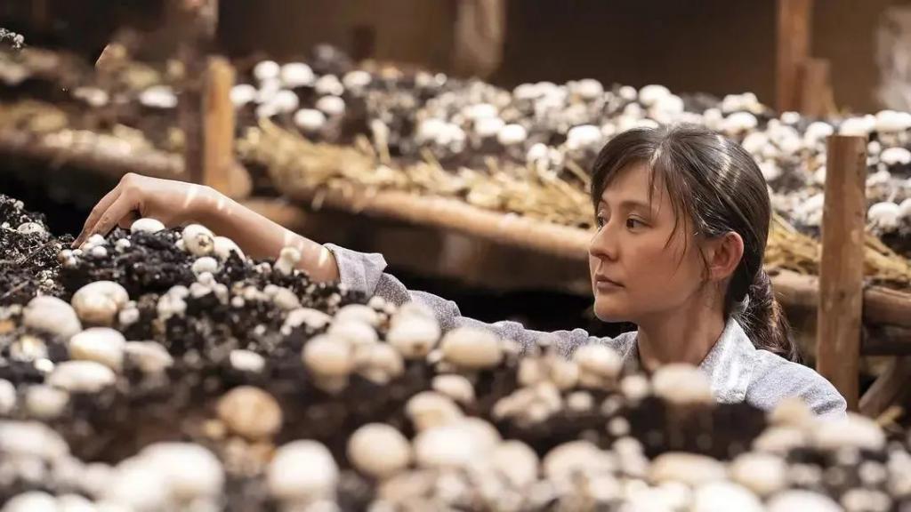 《无穷之路》影评:豆瓣 9.5,零差评国产新片!中国骄傲,必须吹爆